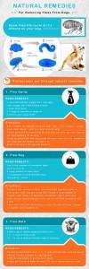 VS-Blog-Infographic-2