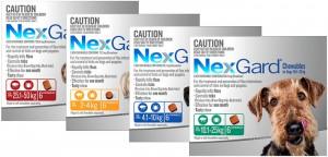 nexgard-chews
