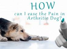 how-arthritic