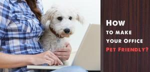 VS_pet-friendly-office