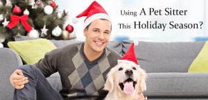 VS_pet-sitter-holiday-season