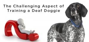VS-Deaf-Dog