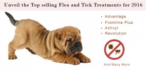 vs-top-selling-flea-and-tick-treatments