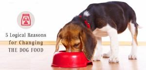 vs-dog-food