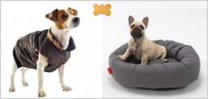 vs-dog-supplies1