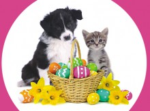 vs-easter-holiday1
