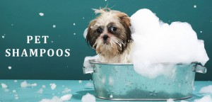 VS-Pet-Shampoos