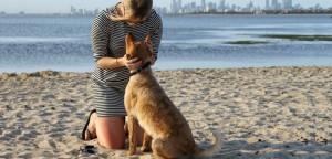 VS-Pup-friendly-Parks1