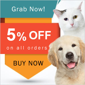 5% Off on All Orders