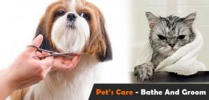 VS-Pets-Care