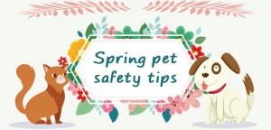 spring-safaty-tips-for-pet-blogsize