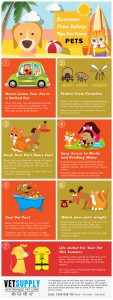Summer-Safety-Tips-for-Pets