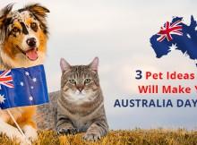 VS-Australia-Day