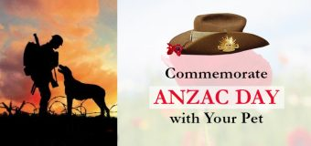 Commemorate Anzac Day with Your Pet