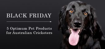 Black Friday-5 Optimum Pet Products for Australian Cricketers