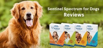 Sentinel Spectrum for Dogs – Reviews