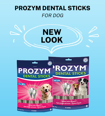 Prozym Dental Sticks