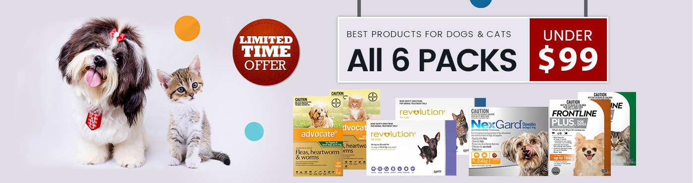 Best Products for Dogs & Cats