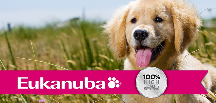 Eukanuba Food For Dogs and Cats