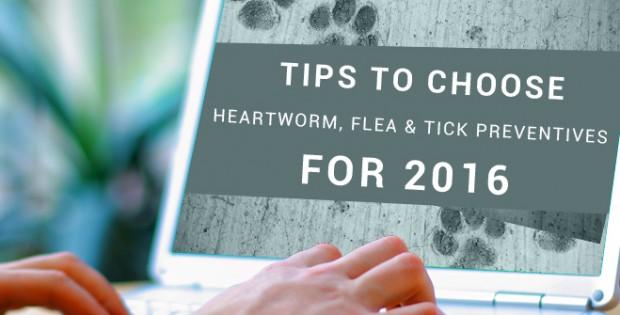 Heartworm, Flea and Tick Preventives for pets