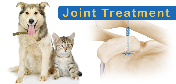 Joint Care Treatments