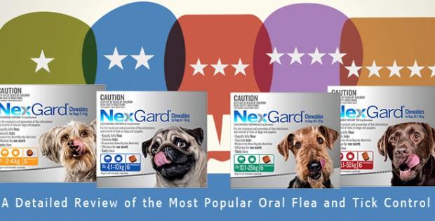 Nexgard Review