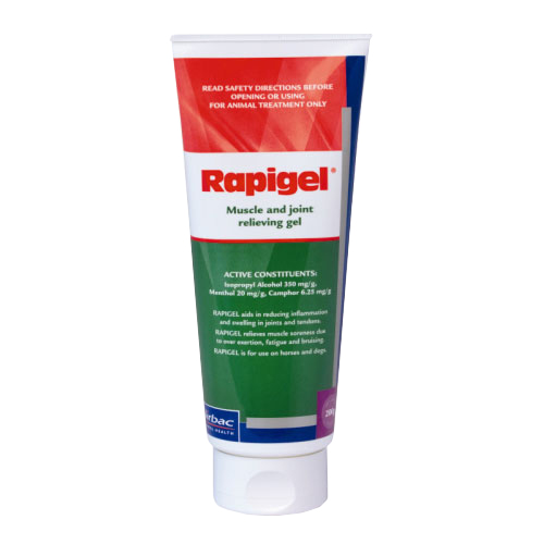 Rapigel Muscle And Joint Squeeze Tube