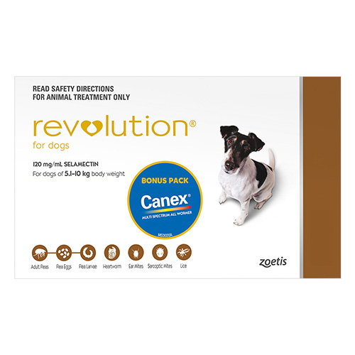 Revolution For Small Dogs 5.1 To 10Kg (Brown)
