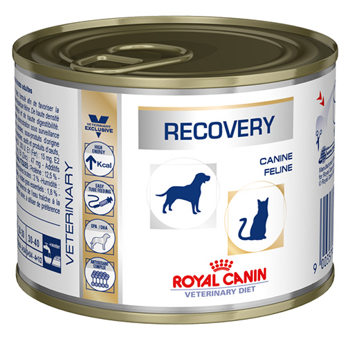 Royal Canin Recovery Cats/Dogs Cans 195 Gm