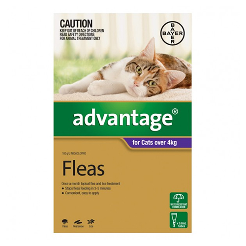 Cheap Cat And Dog Flea Treatment