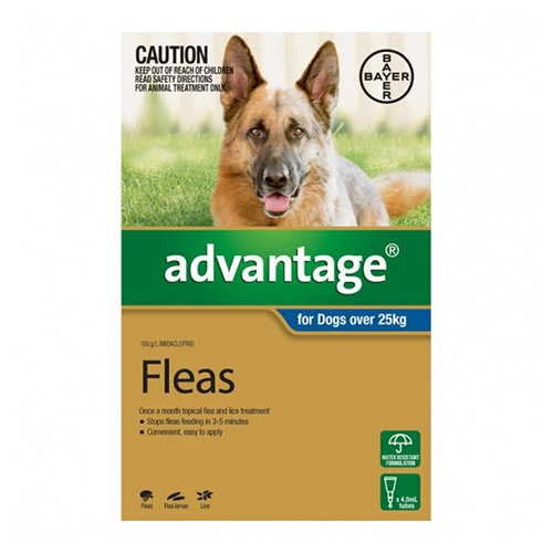 Advantage Flea Extra Large Dogs