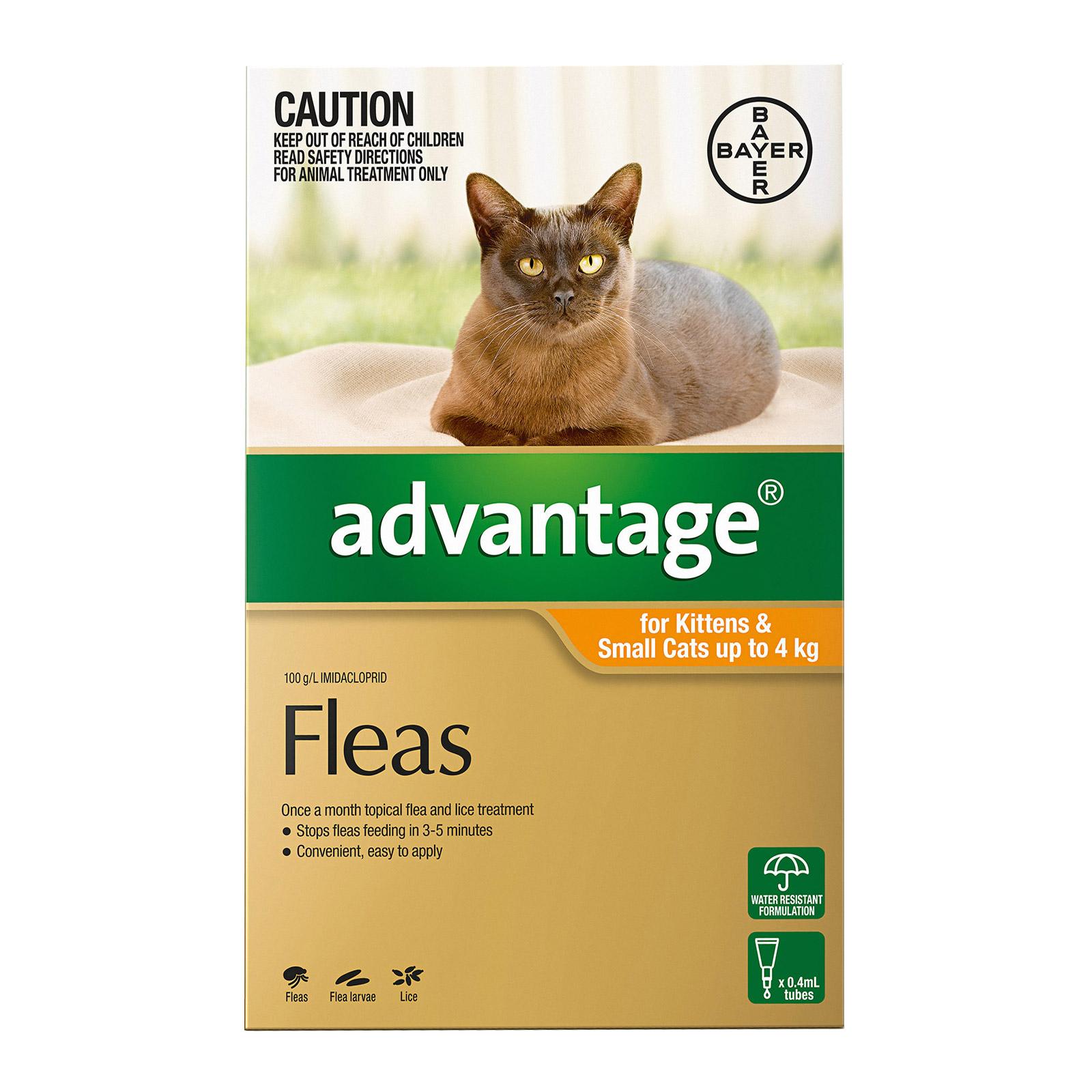 22 unique cat fur patterns