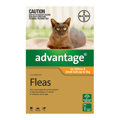 Cheap Cat And Dog Flea Treatment