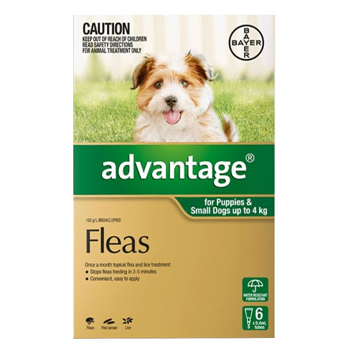 Cheap Advantage For Dogs : Buy Advantage Flea Treatment