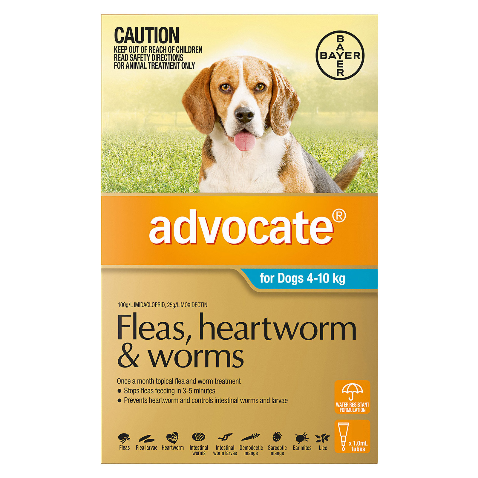 Advocate for Dogs For Medium Dogs 4 to 10 Kg (Aqua)