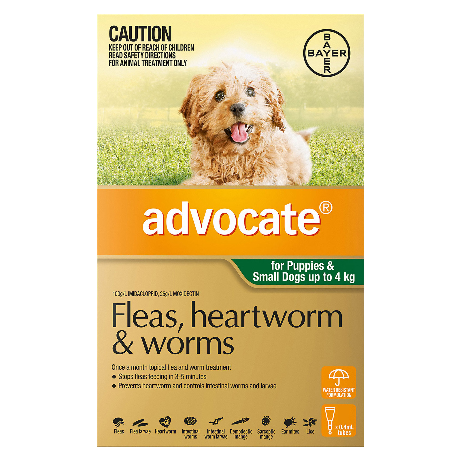 Advocate for Dogs For Small Dogs/Pups up to 4 kg (Green)