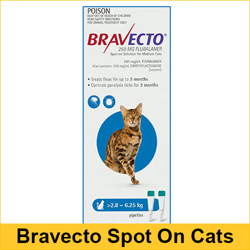 Bravecto Spot On For Medium Cats (2.8 - 6.25 kg) Blue