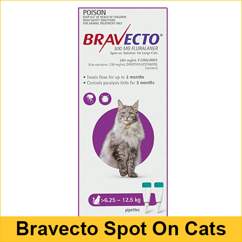 Bravecto Spot On For Large Cats (6.25 - 12.5 kg) Purple