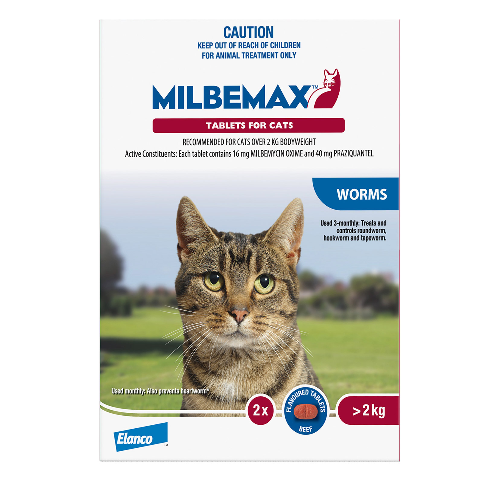 For Large Cats Over 2Kg