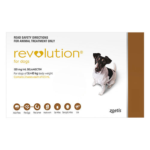 636891477192052475revolution-for-small-dogs-10-1-20lbs-brown.jpg