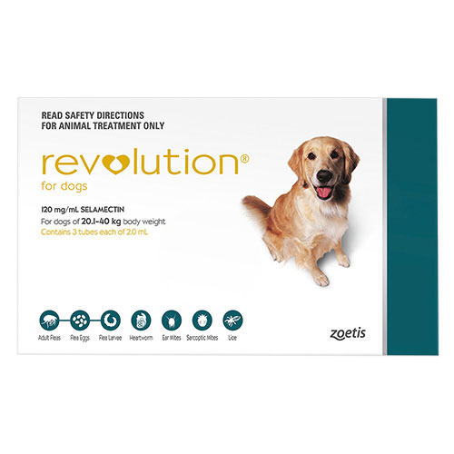 636891477652823266revolution-for-large-dogs-40-1-85lbs-green.jpg