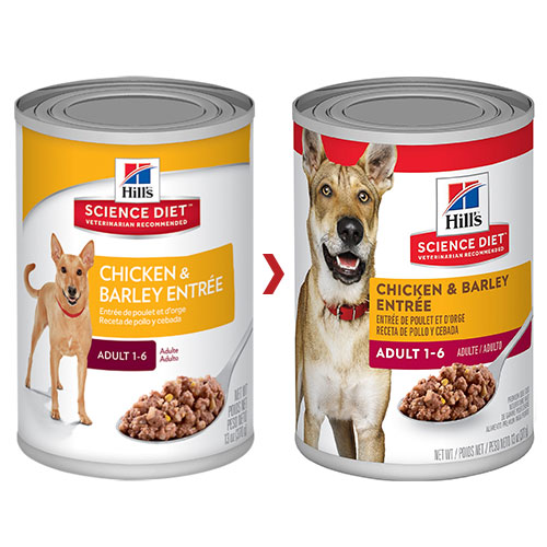 Hill's Science Diet Adult Chicken & Barley Entrée Canned Dog Food
