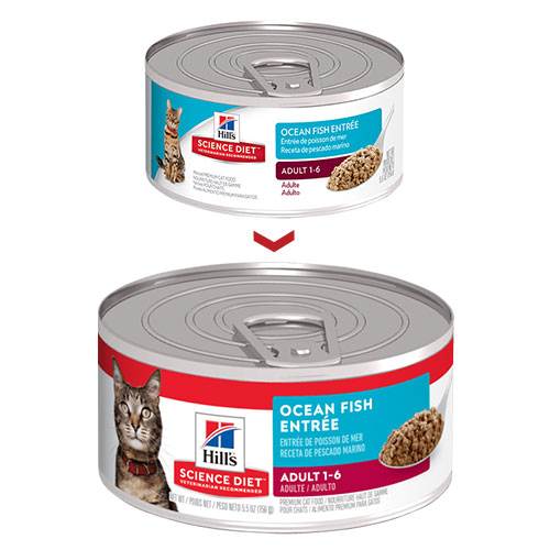 Hill's Science Diet Adult Ocean Fish Entrée Canned Wet Cat Food  156gmx24 Cans 1 Pack Special Clearance Sale (Extra 20% Off)