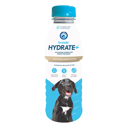 Oralade Hydrate+ for Dogs