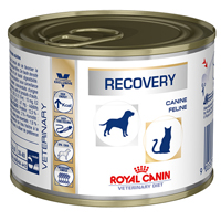 Royal Canin Recovery Cats/Dogs Cans